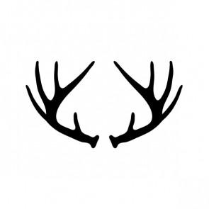 Deer Horns 15373