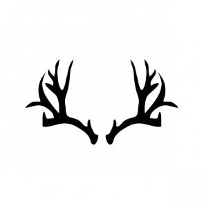 Deer Horns 15382