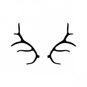 Deer Horns 15384