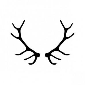 Deer Horns 15386
