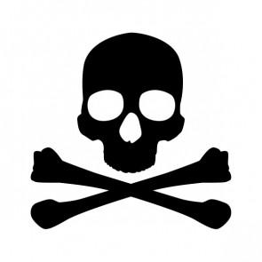 Crossbone Skull 15391