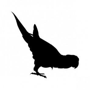 Parrot Figure 15523