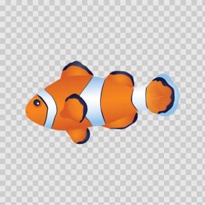 Coral Reef Fish 15727