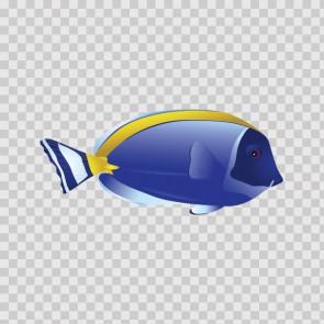 Coral Reef Fish 15729