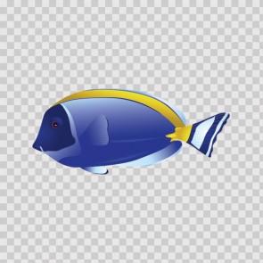 Coral Reef Fish 15730