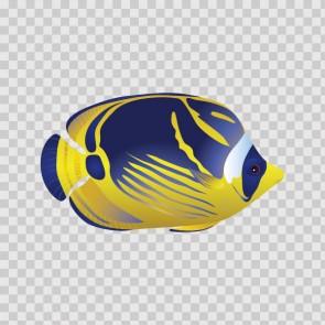 Coral Reef Fish 15733