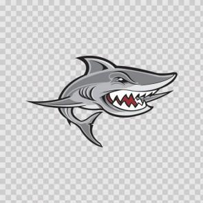 Shark 15782