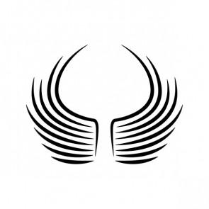Wings A Pair Of 21038