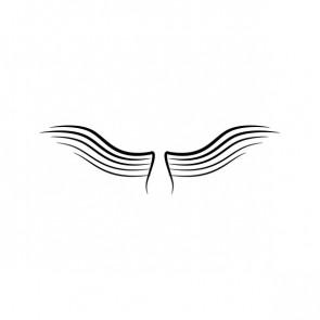 Wings A Pair Of 21040