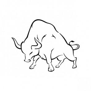 Bull 21252