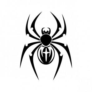 Spider 21333