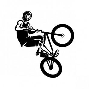Bmx Free Style bike 21457