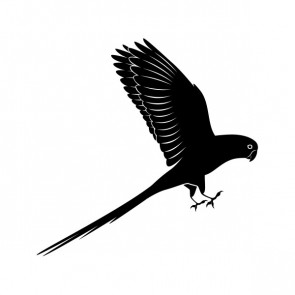 Parrot Icon 21479