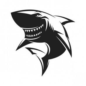 Smiling Shark 21593