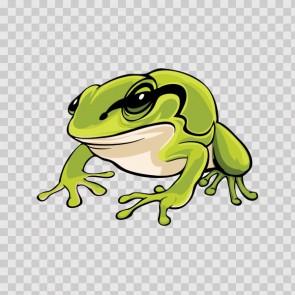 Frog  Cartoon 21668
