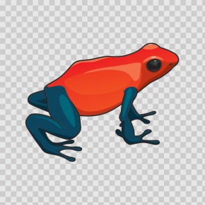 Tropical Frog 21746