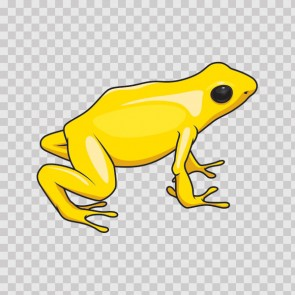 Tropical Frog 21747