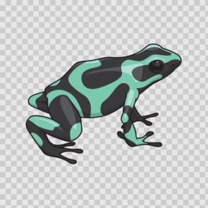 Tropical Frog 21749