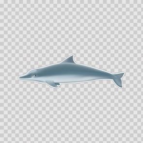 Dolphin 21776