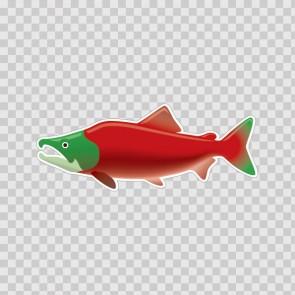 Salmon 21781