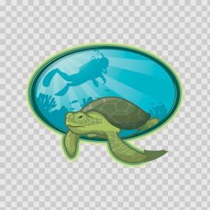 Ocean Turtle Scuba Diving 21790