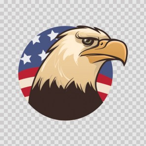 American Eagle Head 22311