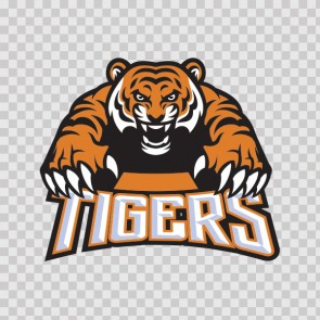 Angry Tigers Attack Mascot 22369