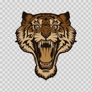 Wild Tiger Head 22500