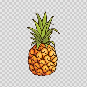 Pineapple Exotic Fruit 23066