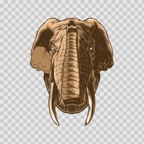 Elephant Head 23077