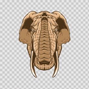 Elephant Head 23078