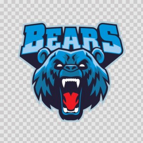 Bears Head Cartoon 26690