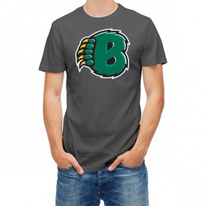 Baylor Bears 27448