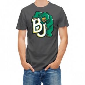 Baylor Bears 27450