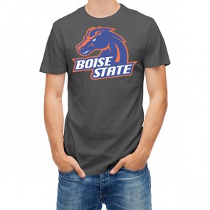 Boise State Broncos 27451