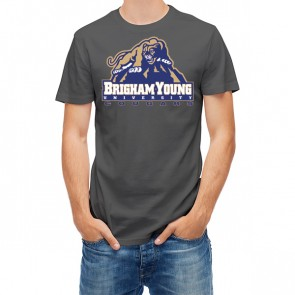 Brigham Young University Cougars 27453