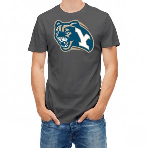 Brigham Young University Cougars 27455