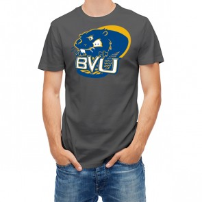 Buena Vista University Athletics 27459