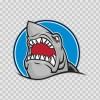 Great White Shark Rising 01461