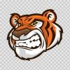Tiger 01953