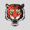 Tiger Head 01962
