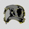 Eagle Skull 04977