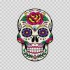 Floral Skull 05196