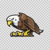 Bald Eagle 07115
