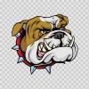 Dog Bulldog Head 09554