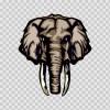 Elephant Head 10703